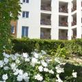 Цветы на территории отеля